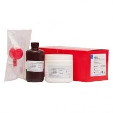 ASTRON CLEARsplint® Packung 320 g Pulver, 240 ml Flüssigkeit