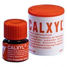 CALXYL® Packung 20 g Paste piros